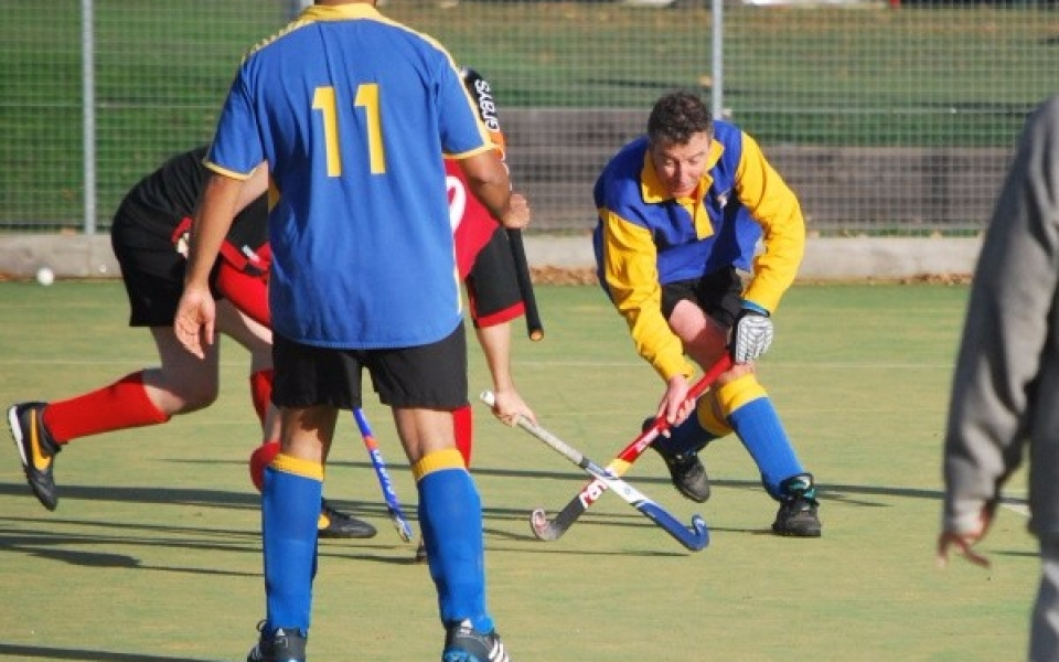 Adelaide, Hendon & Mill Hill 6s 2013 (3)